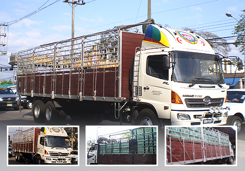 ABOUT US - Thai fruit wholesaler and professional fruit